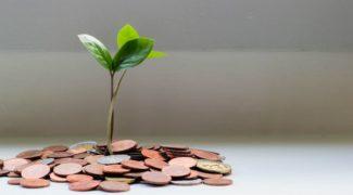 microfinance insight image